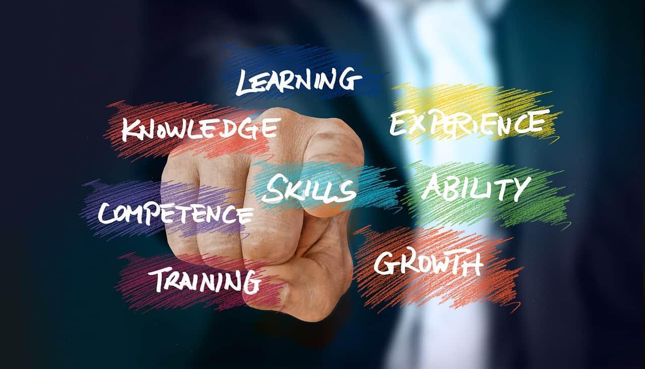 skills of older entrepreneurs